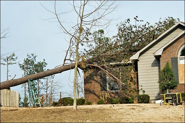 Storm Damage Construction